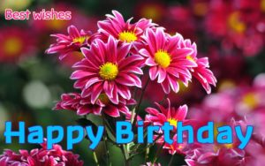 Happy Birthday Wishes and Quotes