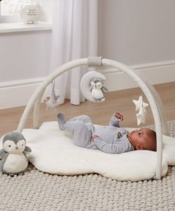 Mobile Baby Play Gym
